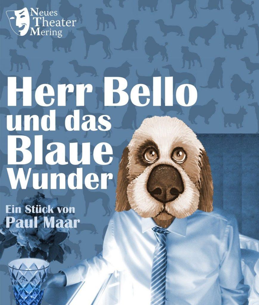 Plakatbild Herr Bello und das blaue Wunder